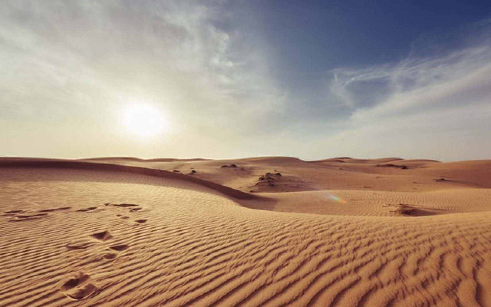 What is desertification? And how do we reverse it? afbeelding